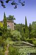 Maison, campagne, jardin, parc, charme, immobilier