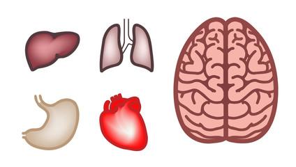 icon set of human organs