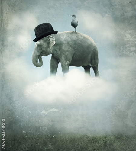 Tuinposter Olifant Fantasy elephant flying