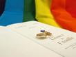 Mariage homosexuel français (projet)