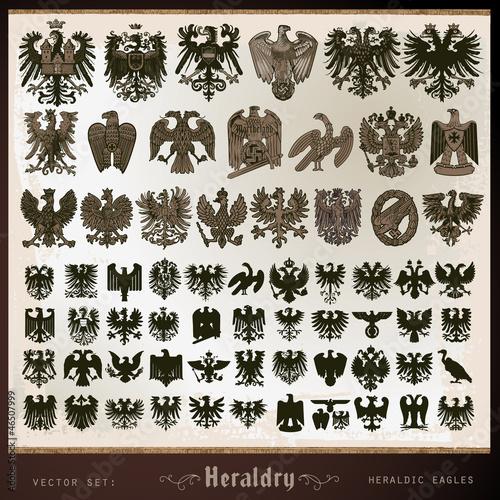heraldic eagles - 46507999