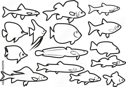 Маленькие рыбы