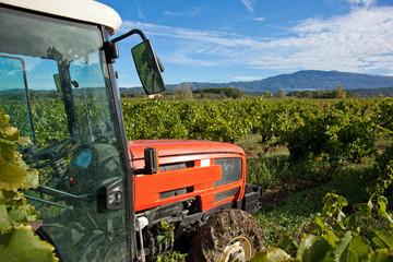 Tracteur dans un champ de vigne