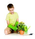 cute boy transplanted the plant poster