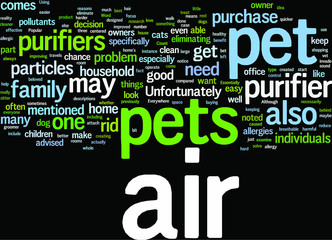 Pet-Owners-The-Benefits-of-Using-an-Air-Purifier