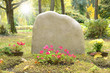 Friedhof 42