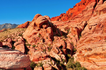 Red Rock Canyon National Conservation Area, Nevada, United State