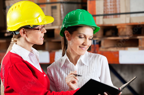 Female Supervisor And Colleague Working Together