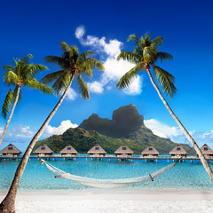 Otemanu mountain,  palms with hammock and sea. Bora-Bora.