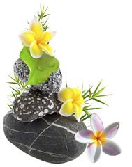 décor galets et fleurs