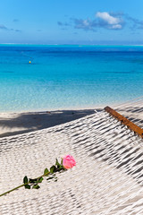 The red rose lies in a hammock and the dark blue sea