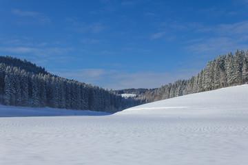 Black Forest under snow, Geramny