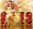 New 2013 Year card with Sexy Santa girl , vector