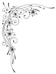 Ranke, Blumen, Blüten, Kalligraphie, filigran