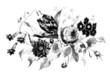 Flowers - Vintage