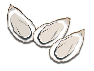 カキ 牡蠣 オイスター