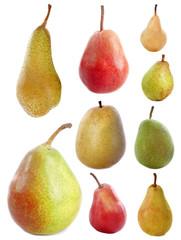 variétés de poires