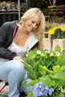 Junge Frau kauft Blumen auf Markt