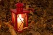 Rote Laterne im Herbstlaub