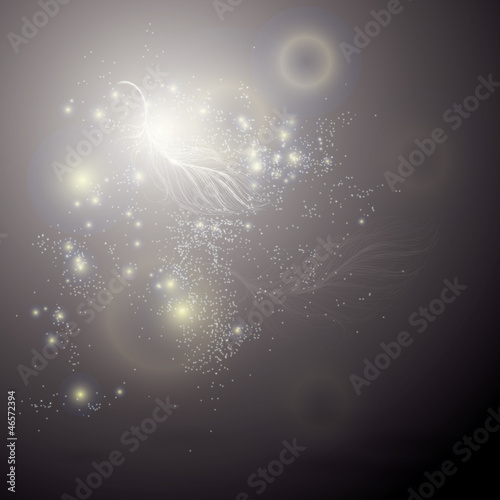 Fairy feather / Glitter luxury background