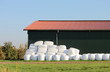 canvas print picture - straw hay bale plastic cover