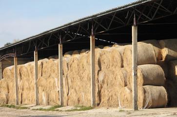 straw hay bale