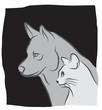 logo chat et chien