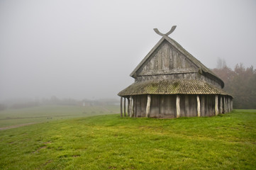Viking's house