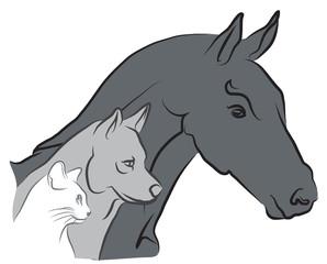 logo chat, chien et cheval - vétérinaire