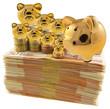 tirelires dorées et pièces sur liasse de billets