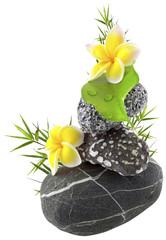 décor bambou, galets, ficus, fleurs de frangipanier