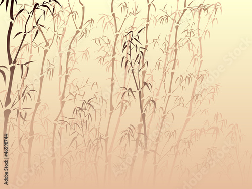 Background with many bamboo from mist in asian style.