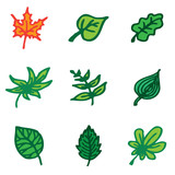 leaves hand drawn icons in vector