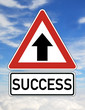 Success Erfolg Schild  #121108-006