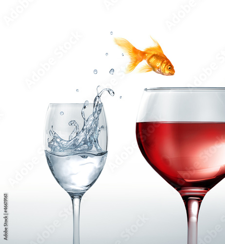 Gold fish smiling jumping from a glass of water, to a glass of r