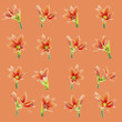 set of beautiful lilium flowers composite