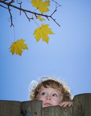 Kind an einem alten Zaun schaut zu gelben Herbst-Blättern