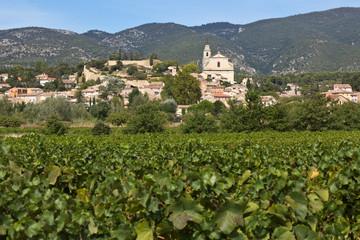Vignobles de Bédoin