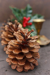 Christmas decoration with cones