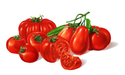 Composition of Different red Tomatoes types grouped. Airbrush il