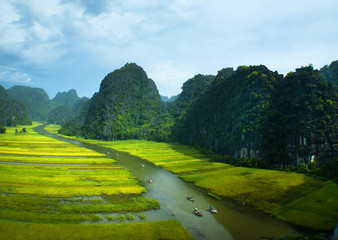 Rice field and river, Ninh Binh, viet nam