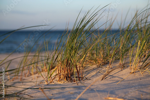 canvas print picture am Ostseestrand