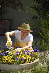 Señora cuidando un jardín,cuidando flores,bañando plantas.