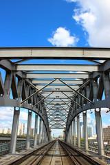 Railway Bridge in Moscow