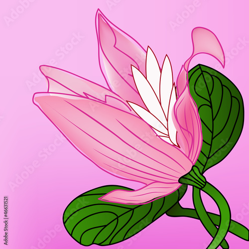 abstract vector background with rose-colored flower. eps10