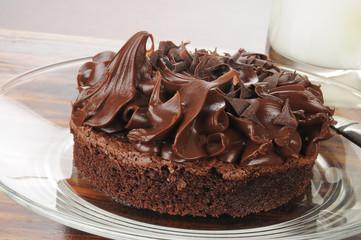Gourmet chocolate brownie