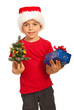 Happy boy holding Xmas tree and gift