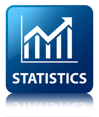 STATISTICS Blue Square Button