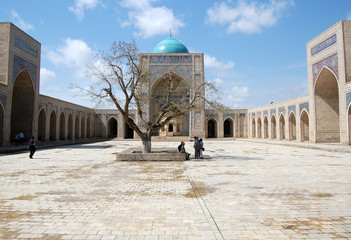 Madrassah Bukhara Uzbekistan