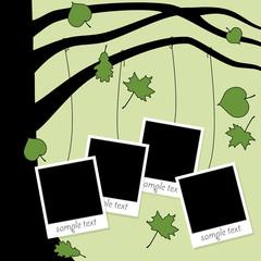 family album with photos hanging on autumn tree